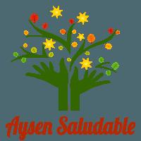 Aysen Saludable